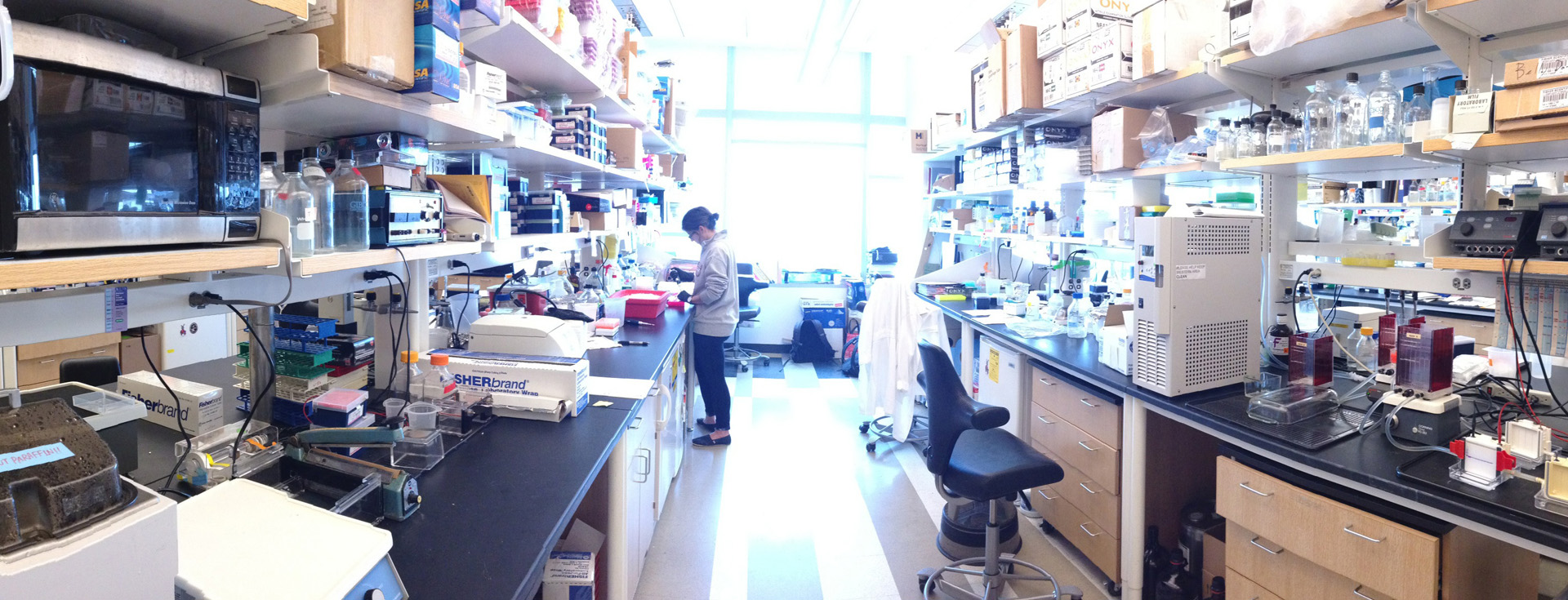 Inside the Chang Lab